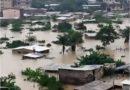 La transcription des préceptes du développement durable au sein des villes camerounaises : cas des villes de Douala et Yaoundé. Quel modèle de durabilité ?