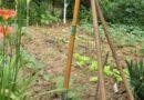26e RDV « Bien-être, Santé & Nature en ville